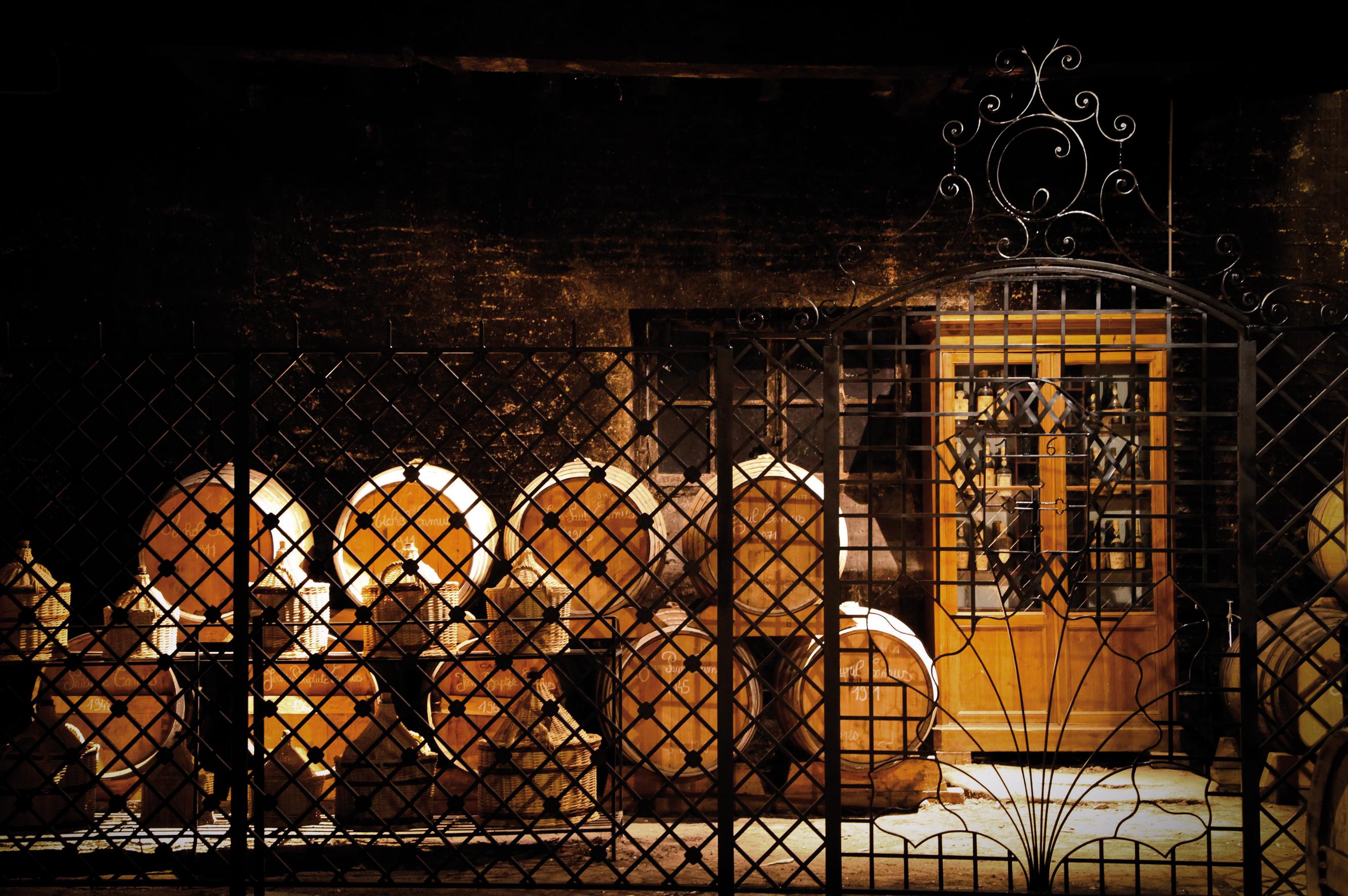 Cognac-Camus-Entreprise-et-Découverte-2