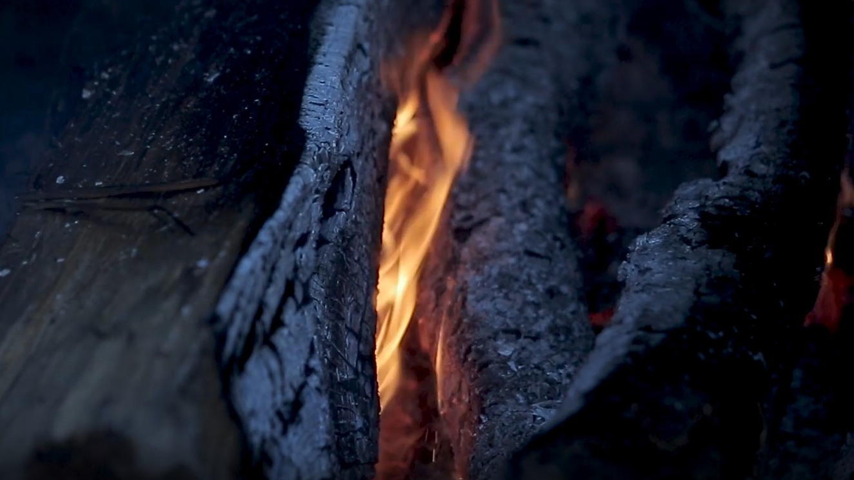 Feu de bois de hêtre SAS JACKY LEDUC