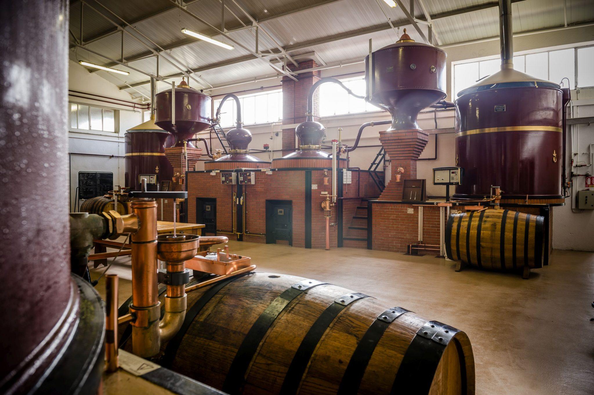 cognac-frapin-entreprise-et-decouverte (2)