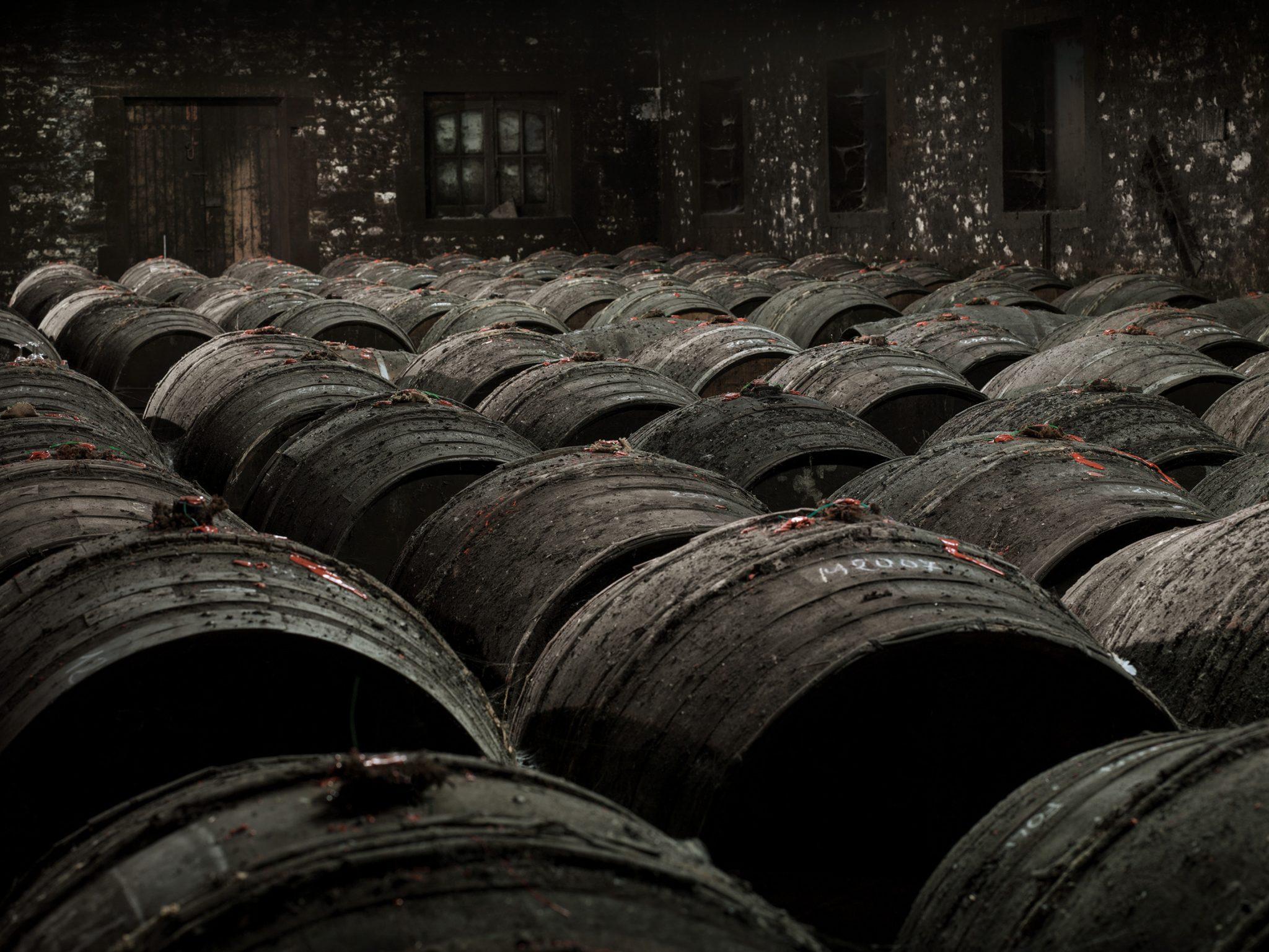 cognac-frapin-entreprise-et-decouverte (4)