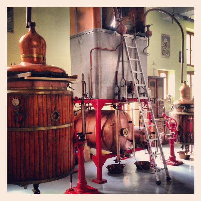 1191_distillerie_emile_pernot-2