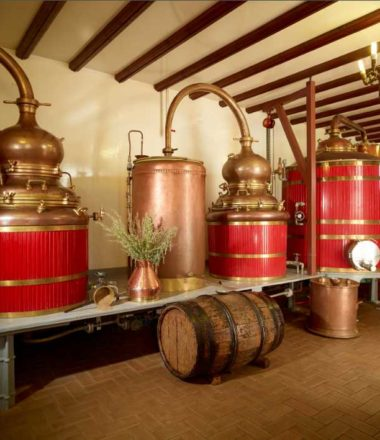DISTILLERIE PIERRE GUY