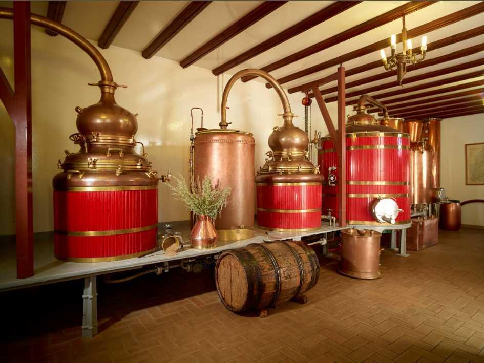 1192_distillerie_pierre_guy-3