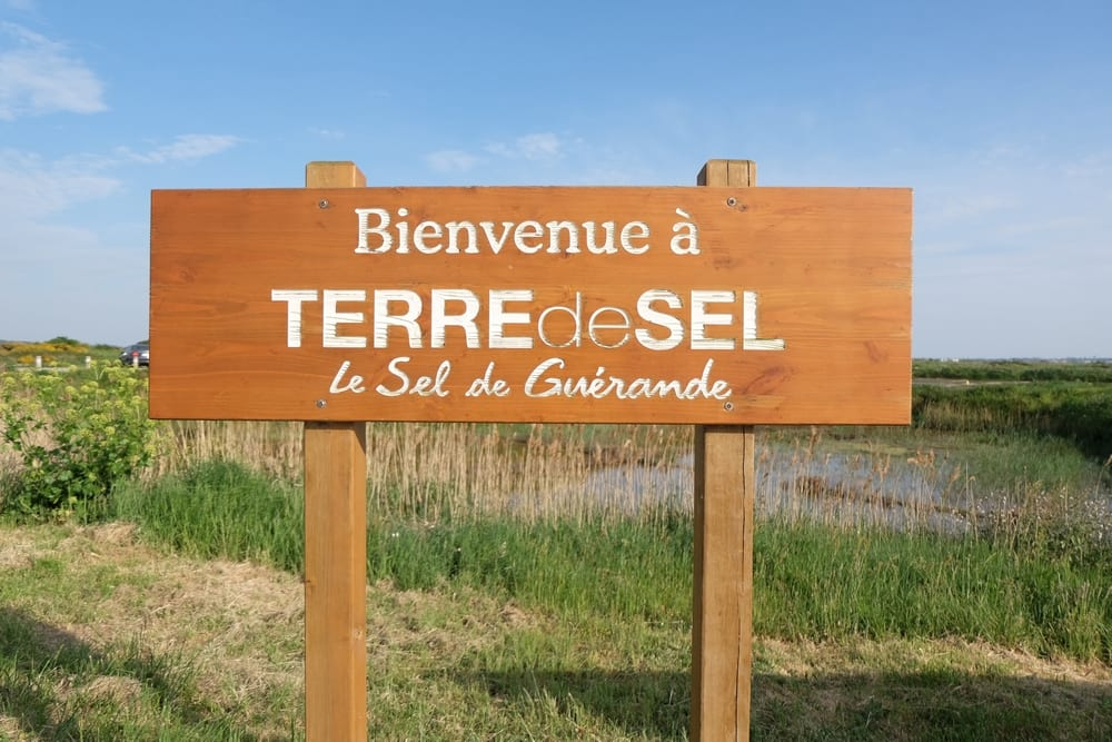 4387_terre_de_sel-8