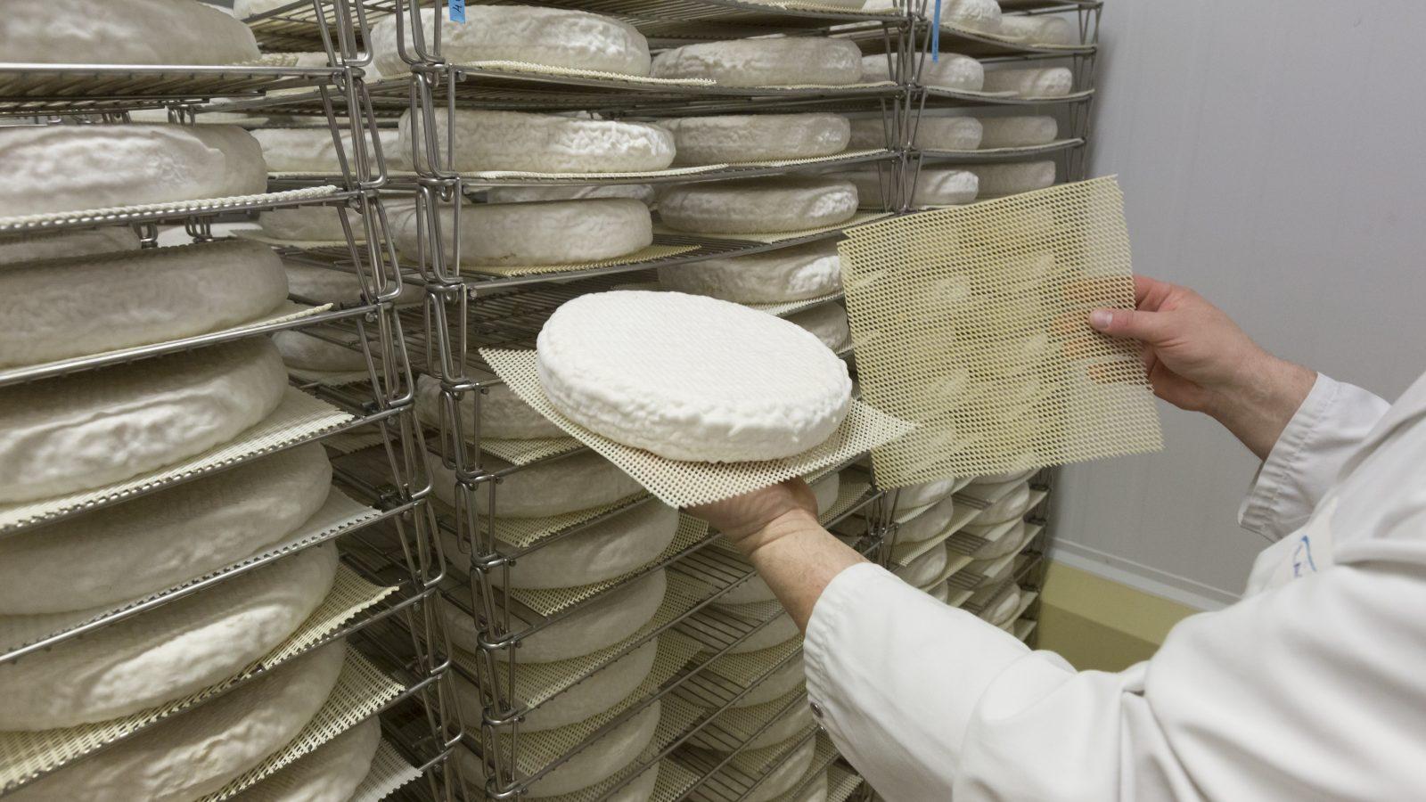 Savez-vous combien il existe de fromages en France ?