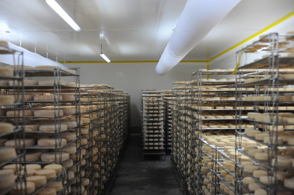 fromagerie-gaugry-affinage-entreprise-et-decouvertegaugry