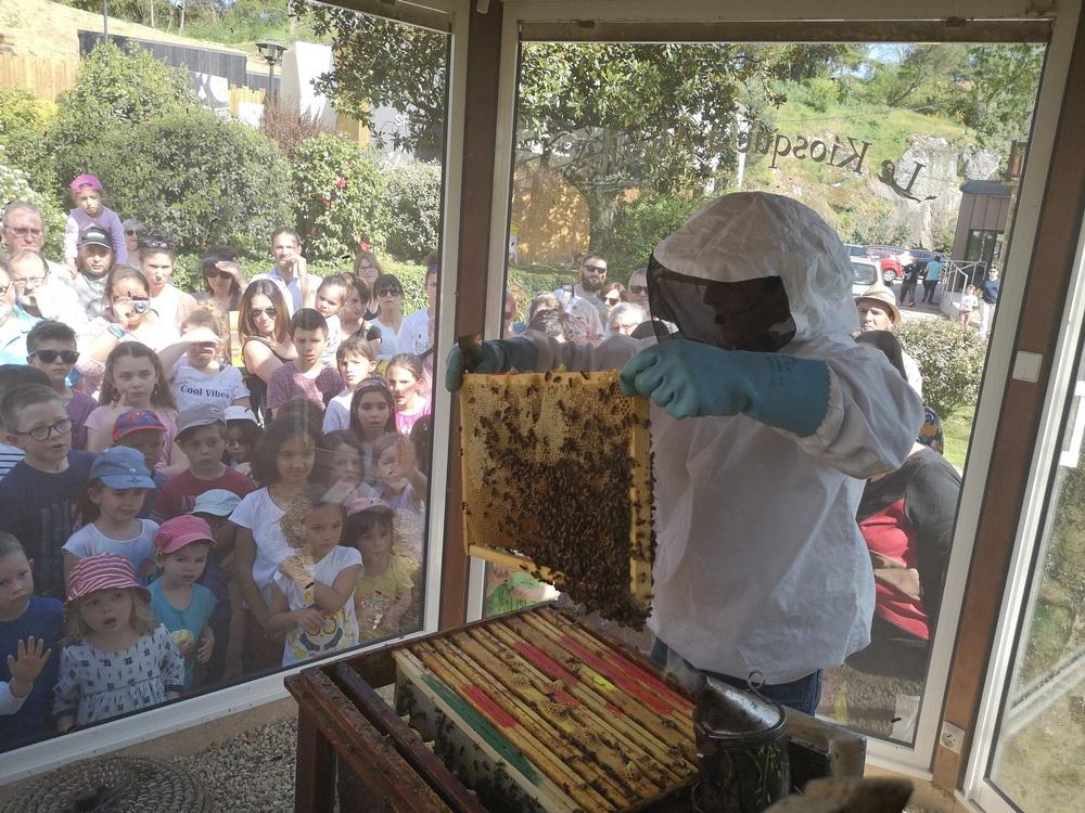 la-ruche-de-mary-2