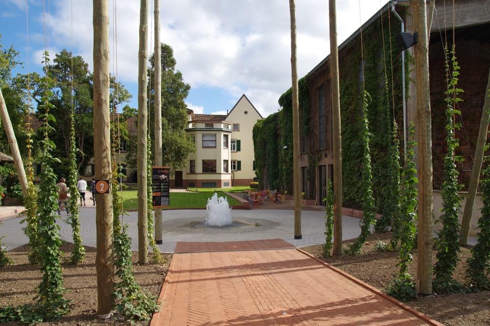 villa_meteor_jardin_entreprise_et_decouvertechristiandebs